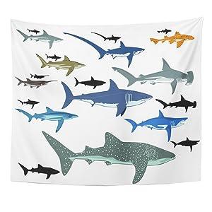 Emvency Tapestry Mandala 60x80 inch Home Decor Black Whale Shark Blue Species Reef Aquatic Life Fin Miscellaneous Bite for Bedroom Living Room Dorm