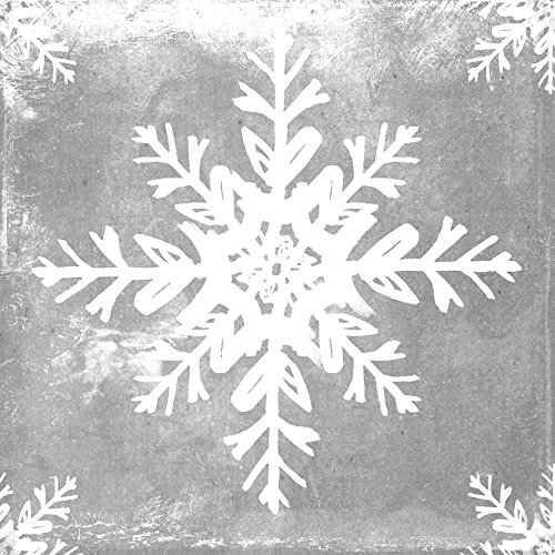 Paperproducts Design Napkins (Pack of 20), Silver Ice Snowflake, Multicolor (Winter Napkins)