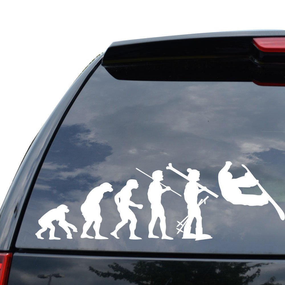 THEORY OF EVOLUTION SNOWBOARDING SNOWBOARD Decal Sticker Car Truck Motorcycle Window Ipad Laptop Wall Decor - Size (05 inch / 13 cm Wide) - Color (Matte WHITE) DiamondCutStickerz