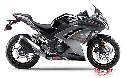 VITCIK Calcomanías para Motos, Adhesivo para Moto EX300R ...
