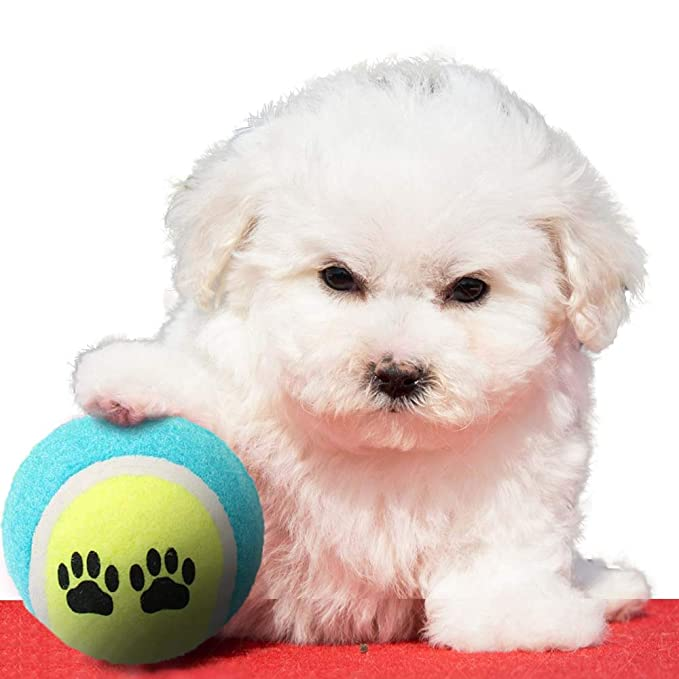 Wysgvazgv Pelota de Tenis para Perro, Indestructible, Pelota de ...