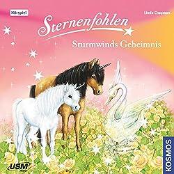 Sturmwinds Geheimnis (Sternenfohlen 8)