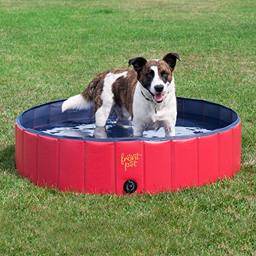 FrontPet Foldable Large Dog Pet Pool Bathing Tub (50 Inch X 12 Inch)