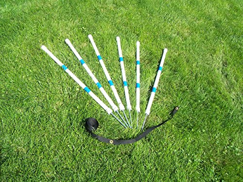 Agility Gear HD Stick-in-the-Ground Weave Poles (6 poles with Heavy Duty Spikes and Placer) by Agility Gear