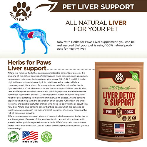@ Holistic Liver Cleanse For Dogs ★★ Home Hydro Colon ...