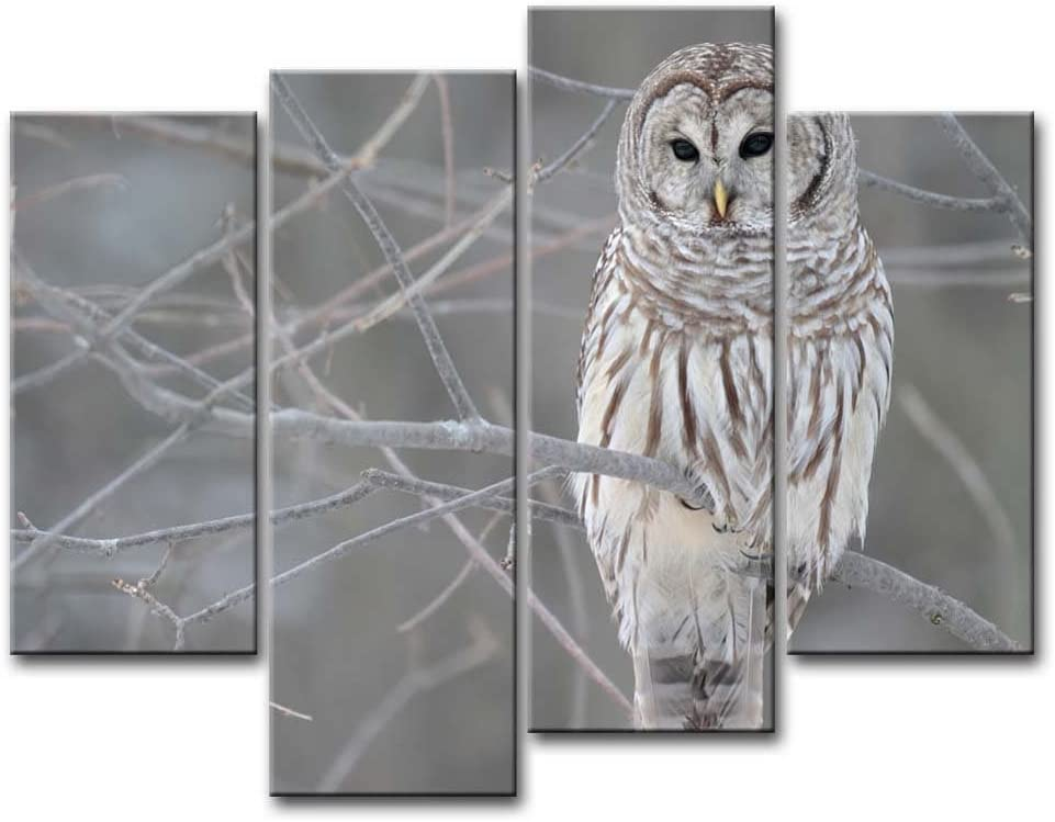 4 Piece Wall Art Painting White Owl in The Tree Prints On Canvas The Picture Animal Pictures Oil for Home Modern Decoration Print Décor