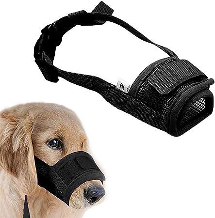 Cute Cool Saint Bernard Dog Sport Waist Pack Fanny Pack Adjustable For Travel