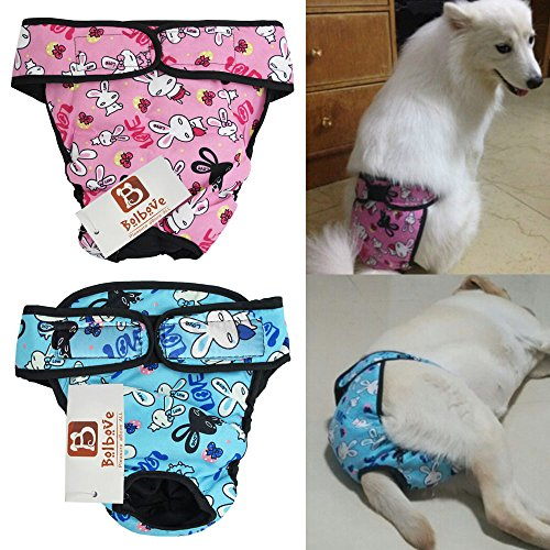 Bro'Bear Adjustable & Washable Female Pet Diaper for Medium to Large Girl Dog Sanitary Pantie (Pack of 2, -