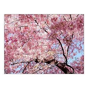 """Creativa arte moderno Giclée Impresión de Lienzo Rosa cerezo árbol paisaje impresiones sobre lienzo 16""""x 12"""" Inch, estirada y enmarcado casa decoración de la pared salón oficina lienzo pared"""