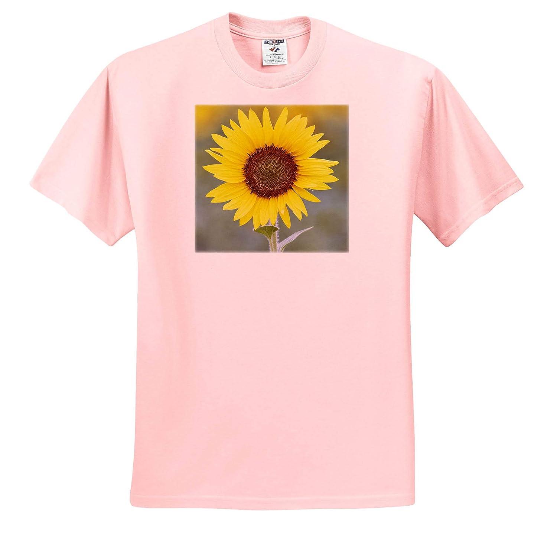 ts/_314618 USA 3dRose Danita Delimont California - Adult T-Shirt XL Napa Valley Close-up of Sunflower Sunflower