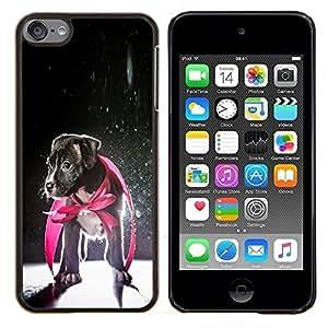TECHCASE---Cubierta de la caja de protección para la piel dura ** Apple iPod Touch 6 6th Touch6 ** --Perrito Jack Russell héroe del perro del bebé