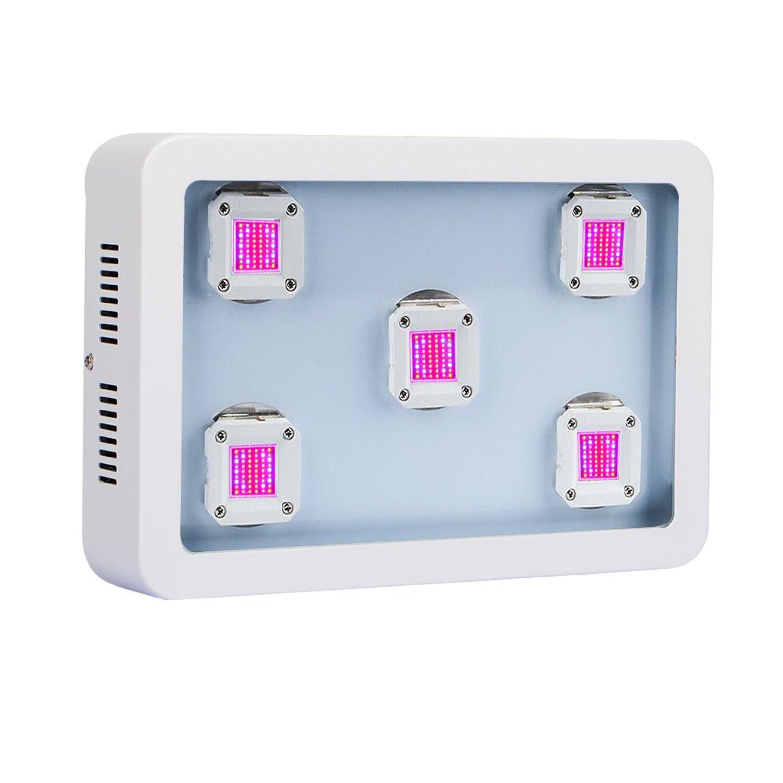 HollandStar LED Grow Light Full Spectrum 1000 Watt/1200W for Indoor Plants Veg and Flower (COB-X5(1000W))