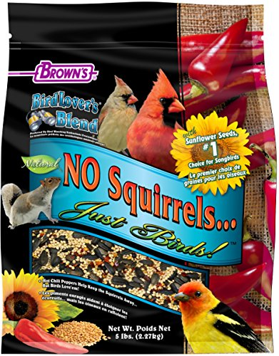 F.M.Brown's Bird Lover's Blend No Squirrels...Just Birds! With Sunflower Seeds, 5 lb