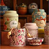 easyshop Little Flower Pastoral Style Mini Tea & Coffee Tin Storage Box