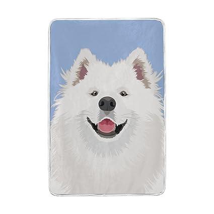 Amazon.com  ColourLife Dog On Blue Queen Soft Blanket Throw Cozy ... b750b8b07