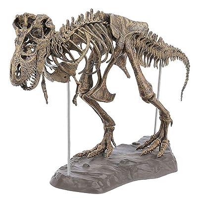 Starmood Tyrannosaurus Rex Esqueleto Dinosaurio Animal Collector Decoración Modelo Juguete: Hogar