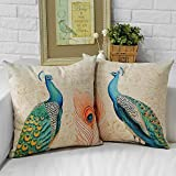 Amazon Com Thro By Marlo Lorenz 4182 Fancy Peacock 16 By