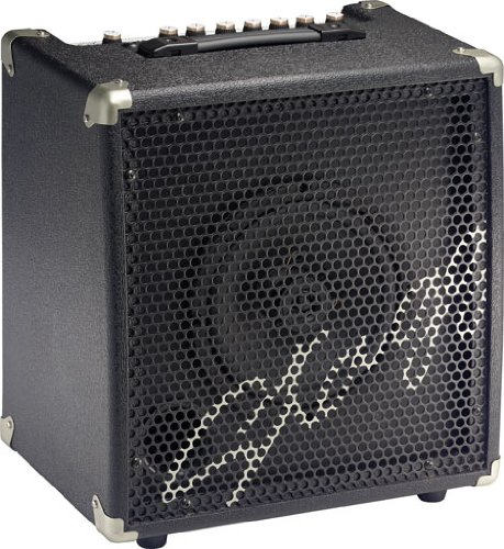 Stagg ADBA40 USA 40-Watt Combo Amplifier for Electric Double Bass by Stagg