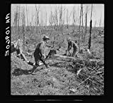 Lon Allen and daughter sawing log on farm near Iron River. It is a common practice for both sexes to work together in operations on the farm
