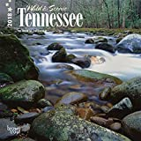 Tennessee, Wild & Scenic 2018 7 x 7 Inch Monthly Mini Wall Calendar, USA United States of America Southeast State Nature