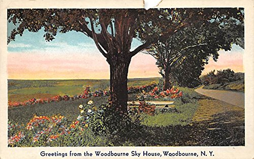 Greetings from Woodbourne Sky House Woodbourne, New York, Postcard