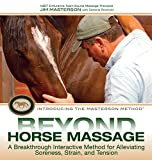 Beyond Horse Massage: A Breakthrough Interactive