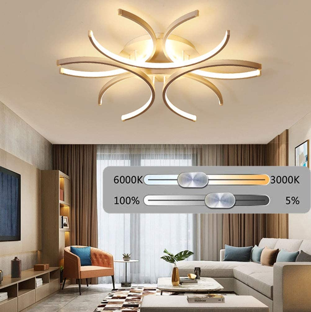 Interior Light Living Room Ceiling Light, With Remote Control Dimmable Modern Creative Curved Design Ceiling Lights Bedroom Children