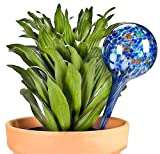 Aqua Globes -Gimmick World Glass Plant Watering Bulbs, 2-Pack (3)