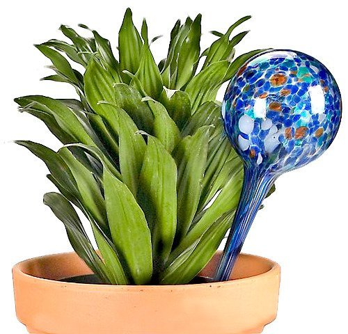 Aqua Globes -Gimmick World Glass Plant Watering Bulbs, 2-Pack (3) For Sale