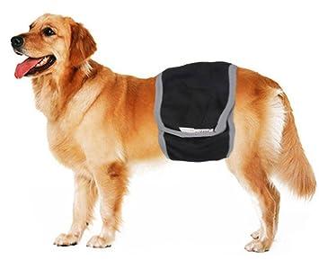 Gran Macho perro sanitaria Pant Pañal incontinencia pañal pantalones pantalla Belly Wrap banda lavable pañales ropa