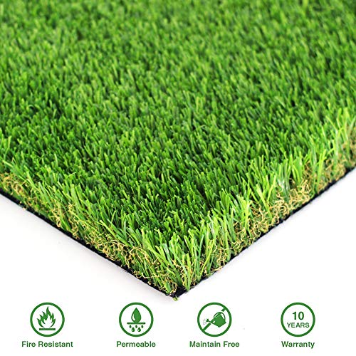 GL Premium 35mm Pile Height Artificial Grass, Realistic and Thick Fake Faux Grass Mat, Outdoor Garden Dog Pet Synthetic Grass, Carpet Doormat Rubber Backed with Drainage Holes 6 FT x10 FT/60 Square FT from Goasis Lawn