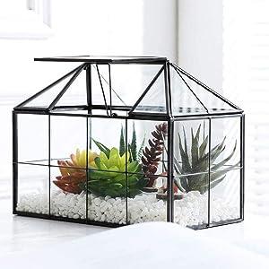 Tiamo Glass Terrarium, House Shape Geometric Succulent Terrarium with Swing Lid Tabletop Planter Box Mini Indoor Greenhouse for Fern Moss Air Plants Miniature Housewarming Gift