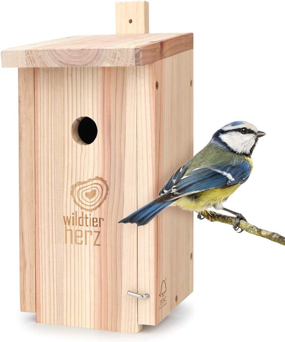 wildtier herz | Nidal para tit azul, madera maciza atornillada, sin tratar, resistente a la intemperie, casa para pájaros, ayuda para nidos con orificio de entrada de 28 mm