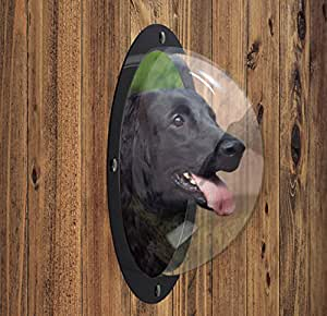 Amazon Com Furryfriends Pet Window Acrylic Dog Window