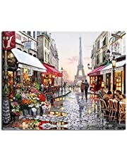 Leezeshaw Diy Oil Painting, Paint By Number Kits Home Decor Wall Pic Value Gift - Romantic Paris Street Eiffel Tower 16x20 Inch