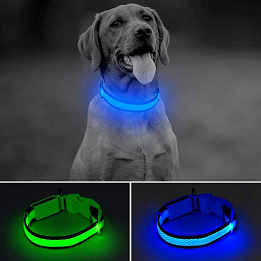 BSEEN LED Dog Collar USB Rechargeable Glowing Lighted Up Pet Collar, Lightweight Nylon Webbing High Visibility Keep Pet's Safety Glow in The Dark for Small Medium Large Dogs
