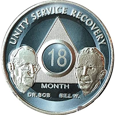 wendells 18 Month Founders AA Medallion Titanium Nickel Plated Chip Bill W & Doctor Bob: Toys & Games