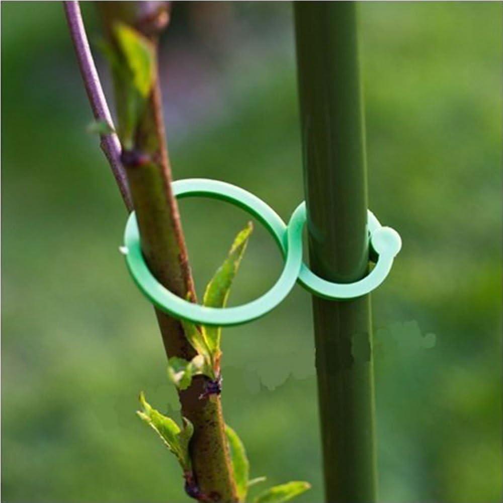 ISKYBOB 40 Piezas Soporte Plantas Clips Pinzas para Plantas ...