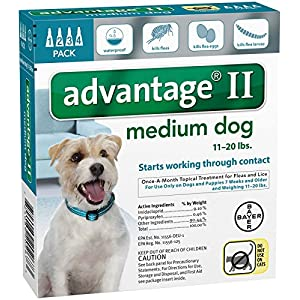 Bayer Animal Health Advantage II Medium Dog 4-Pack 22