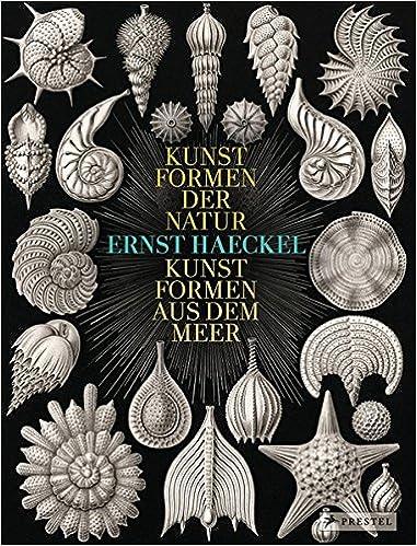 Ernst Haeckel: Kunstformen der Natur - Kunstformen aus dem Meer: Amazon.es: Olaf Breidbach: Libros en idiomas extranjeros