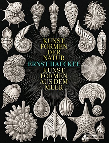Ernst Haeckel: Kunstformen der Natur - Kunstformen aus dem Meer