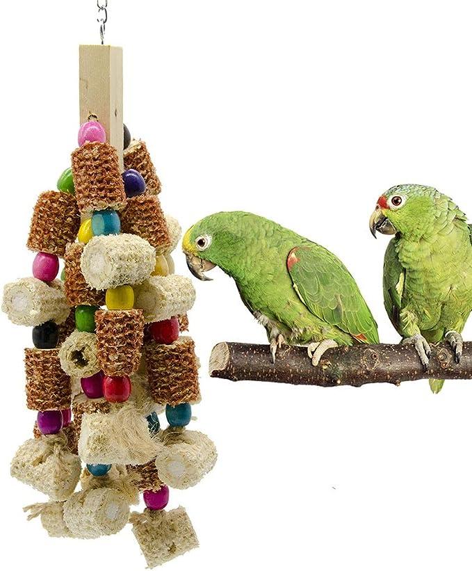 Parrot Bite Juguete Madera Natural Grande del Loro Gris Africano de Juguete guacamayos cacatúas Eclectus Loro del Amazonas Aves Jaula Loros Juguetes (Color : Multi-Colored, Size : Free Size)