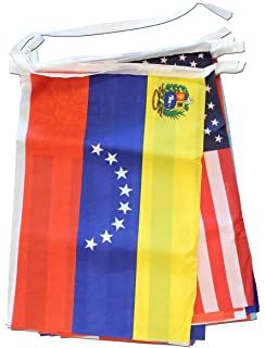Amazoncom 21 Spanish Speaking Countries Flagsbanner Office Products