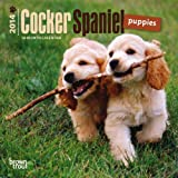 Cocker Spaniel Puppies 18-Month 2014 Calendar