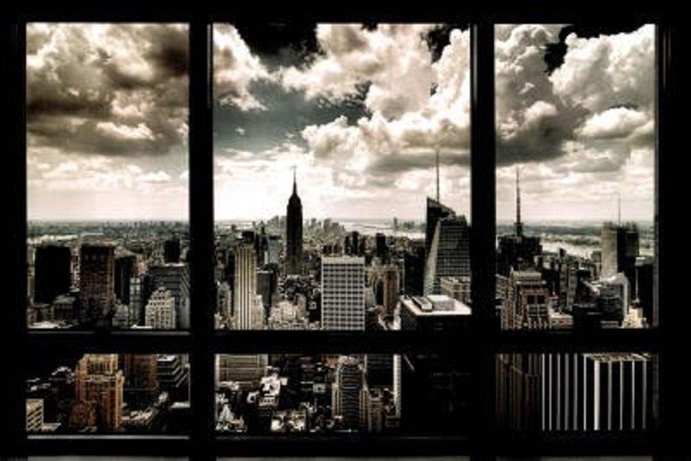 Laminated New York Window Poster Art Print 24x36