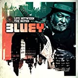 Life Between the Notes by Bluey (2015-05-04)