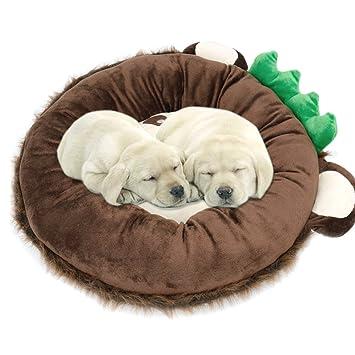 feeshow perro gato cama cachorro alfombrilla para mascotas sofá nido casa cojín: Amazon.es: Productos para mascotas