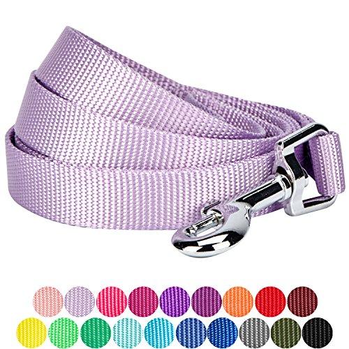 Blueberry Pet 19 Colors Durable Classic Dog Leash 5 ft x 3/4
