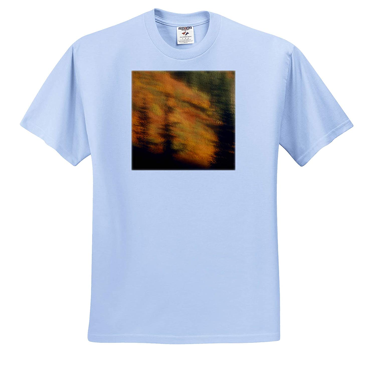 Blurred Background Image of Trees in a Forest in Autumn ts/_313924 - Adult T-Shirt XL 3dRose Danita Delimont Autumn