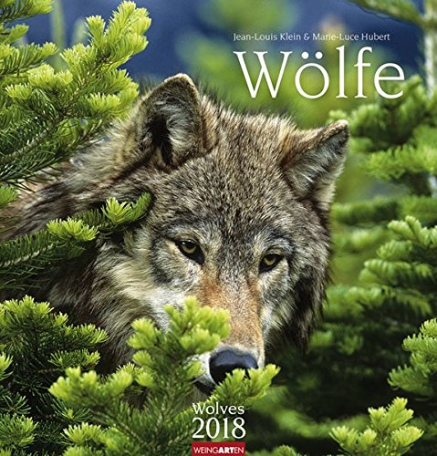 wlfe-kalender-2018